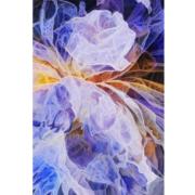 Unfolding-by-maluni-70x100
